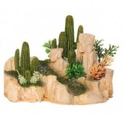 Kameň s kaktusom M