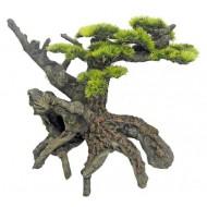 Japan bonsai 35x18,5x27cm