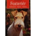 Foxteriér