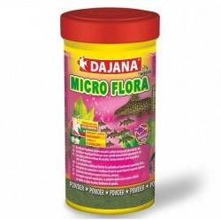 Dajana Micro flora
